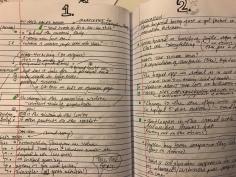 Copious notes!